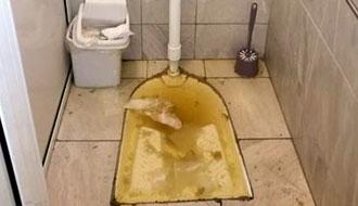 Отшушване на тоалетна